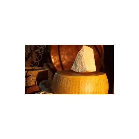 Parmigiano Reggiano DOP Aged 3 Years 1 Kg.– Sold by the Pound by pastacheese